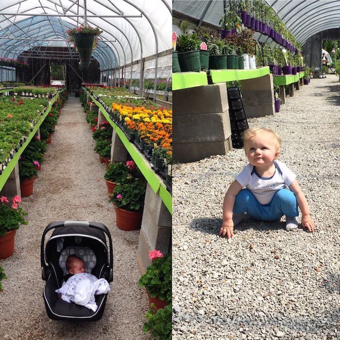 flower shopping one year later