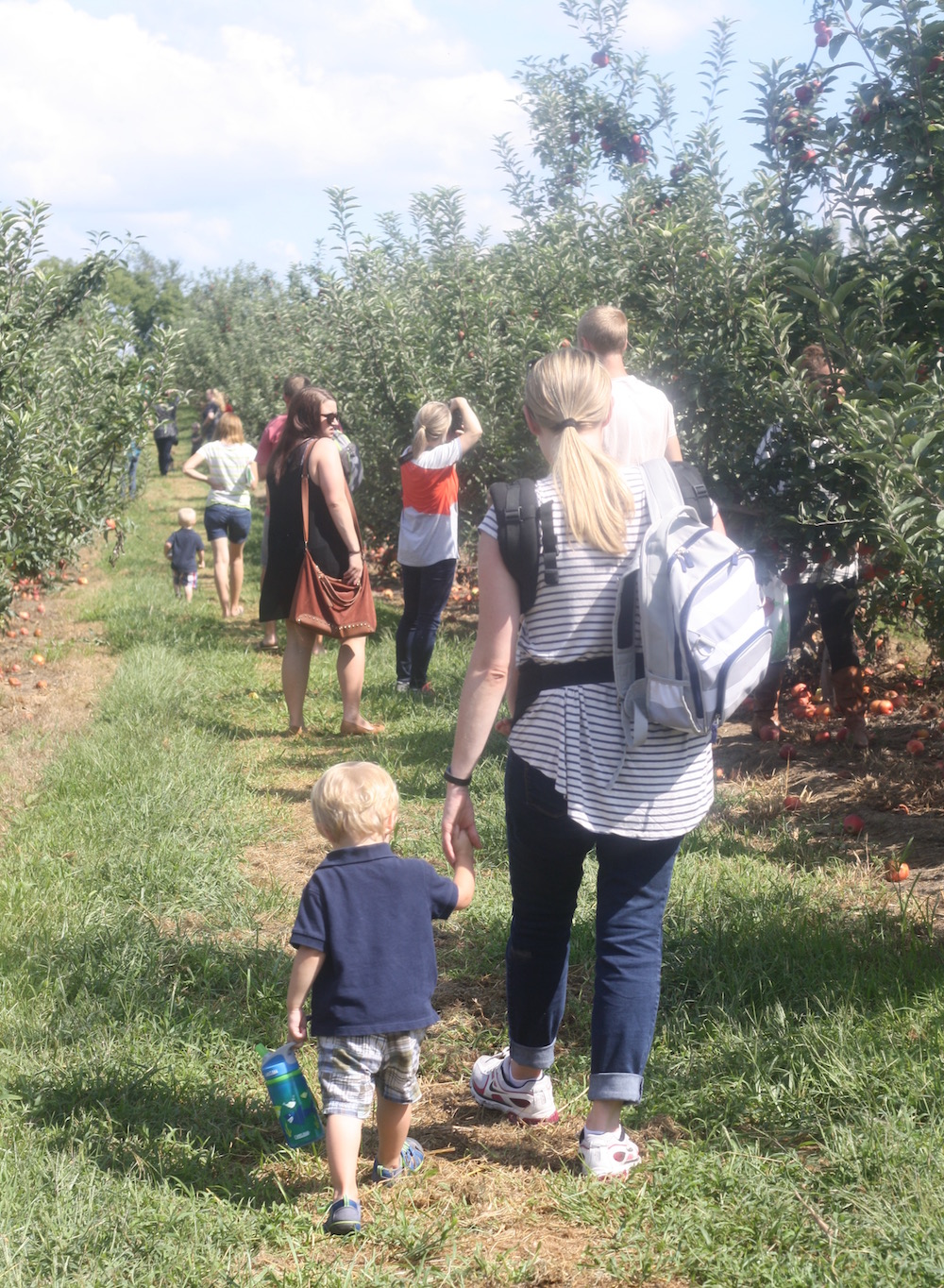 Apple Picking at Eckert's | Ellie And Addie