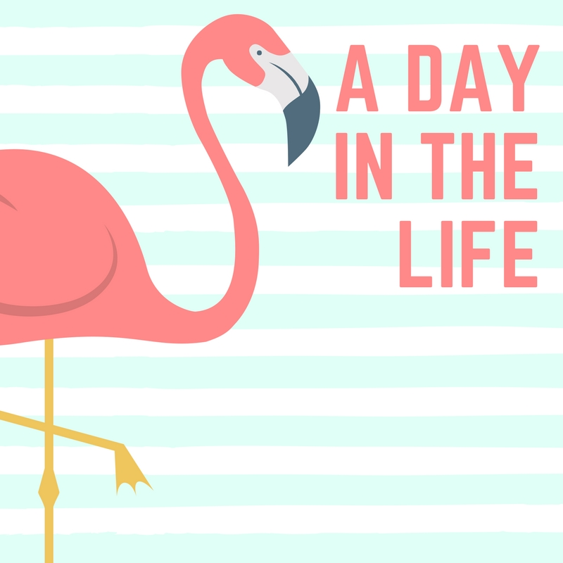 These Are The Days Of Our Lives   Summer 2017