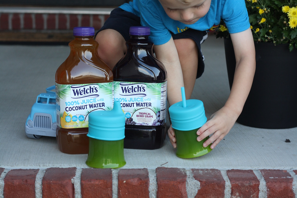 Staying Hydrated with Welch's 100% Juice with Coconut Water | Ellie And Addie